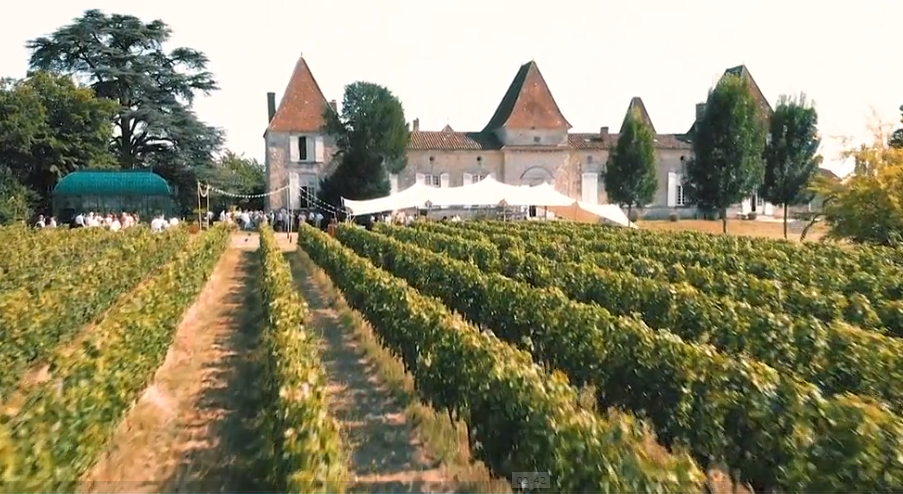 Chateau Aerial shot 4